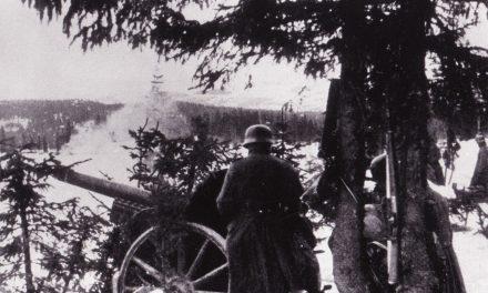 Kampene i Åsmarka 1940